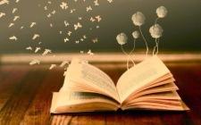 llibres papellones coto