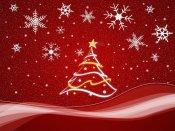 Nadal vermell