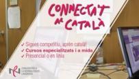cursos catala connectat catala